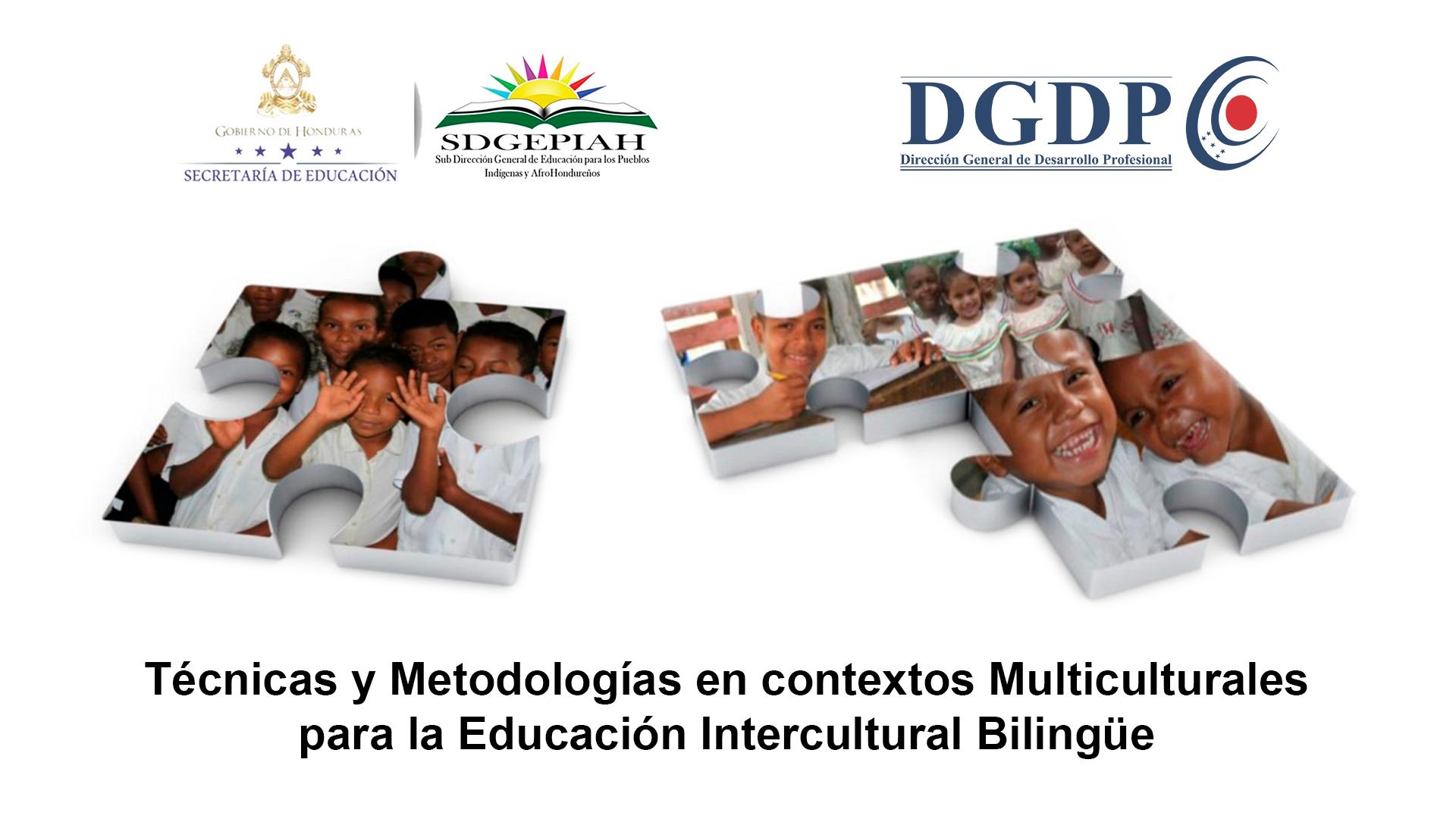 Diplomado Técnicas y Metodologías Multiculturales para la EIB